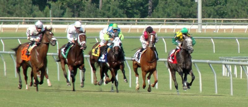 2010 Colonial Turf Cup - photo by Stacy Edwards